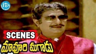 Maavoori Magaadu Telugu Movie Scenes - Satyanarayana, Krishna, Aruna Nice Scene
