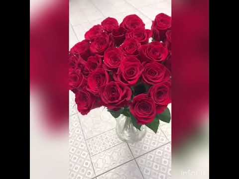 25 красных роз | Доставка цветов PION.RU