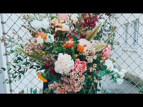 Pampa des fleurs coup de coeur youtube - Fleur de pampa ...
