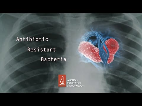Antibiotic Resistant Bacteria