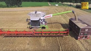 Mähdrescher CLAAS LEXION 780 TERRA TRAC Weizenernte Fendt - biggest combine harvester harvest barley