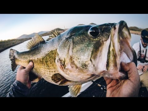 Giant Bass With No Graphs - Bass Fishing In A New Country!