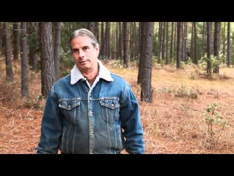 Save the Williams Watershed: Dave Levine (K.S. Wild)