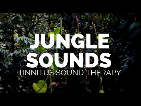 8-hours-of-sleep- nature- -birds -cicadas- -thailand-jungle-s1-ep1- -tinnitus-releif