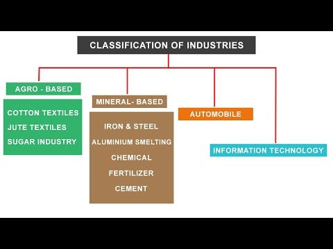 NCERT Class 10 | Classification of Industries - Agro, Mineral, Automobile, IT sector
