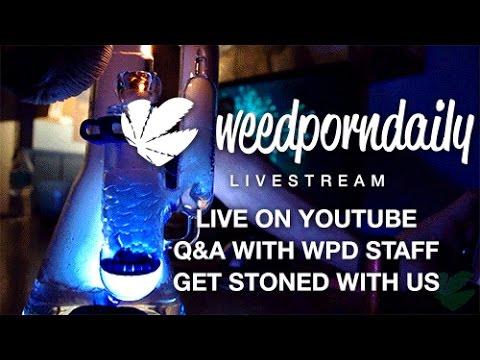 WPD LIVE - Saturdaze Sessions 10/31/15