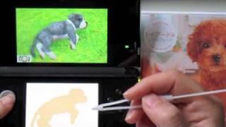 3ds Nintendogs + Cats (boxer)