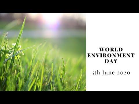 Biodiversity, World Environment Day - UN
