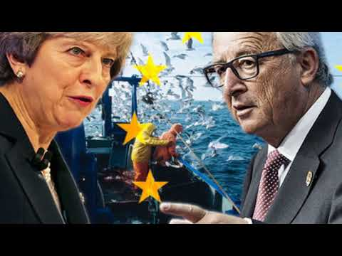 EU's Brexit transition deal will 'ERADICATE Britain's fishing fleets', w arn UK's fishermen