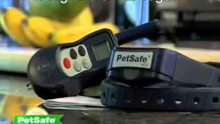 Petsafe Venture Series Remote Dog Trainer Overview