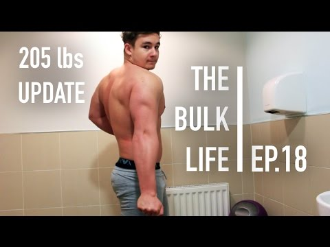 205 lbs Physique Update | The Bulk Life - Ep. 18