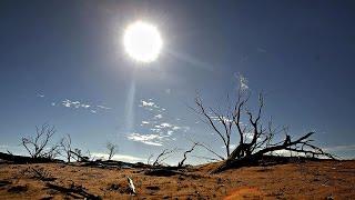 В Давосе обсудили глобальное потепление (новости)