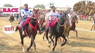 ददरी सेमीफाइनल 1 HORSE RACE BALLIA KI RACE