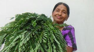 Healthy Village Food ❤ cooking Sesbania Grandiflora Leaves in my Village by my Mom