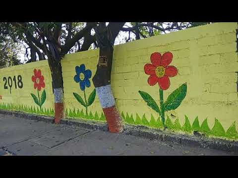 Save Tree   during construction of compound wall at Airoli Navi Mumbai India
