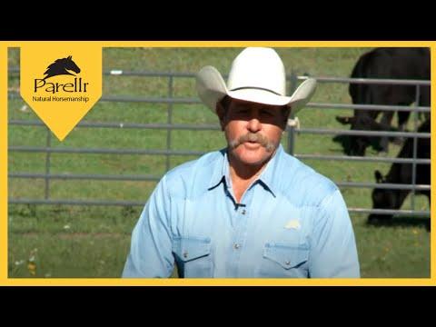 Problem Horses - Rears when Ridden