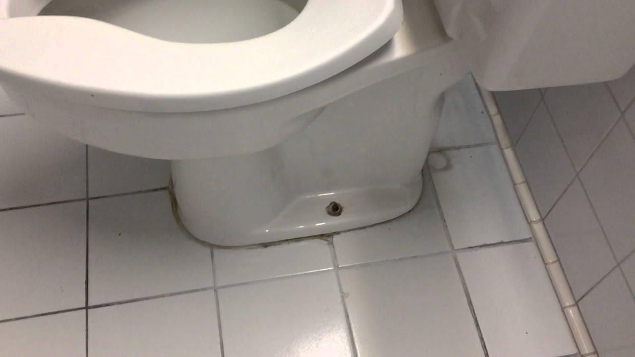 5065 Comfort Height 1986 American Standard Cadet Toilet
