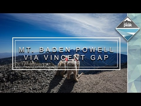 Hiking Mt Baden Powell Via Vincent Gap With Dogs