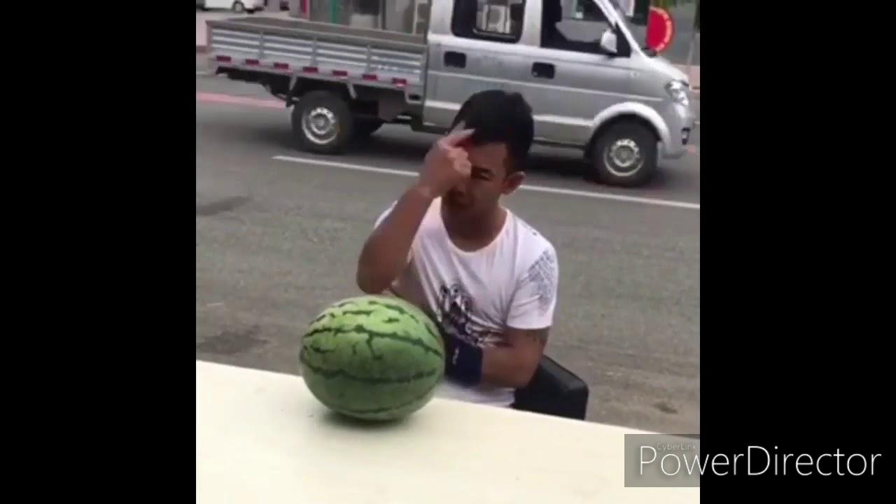 Lustige Videos Youtube