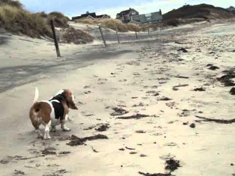 Scotch Beach Block Island