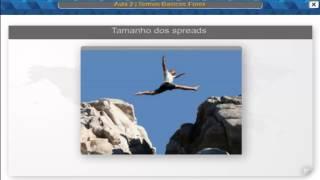 TERMOS BASICOS DO MERCADO FINANCEIRO DE CAMBIO (FOREX)