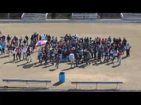 Harlem Shake (Nottoway High School Edition)