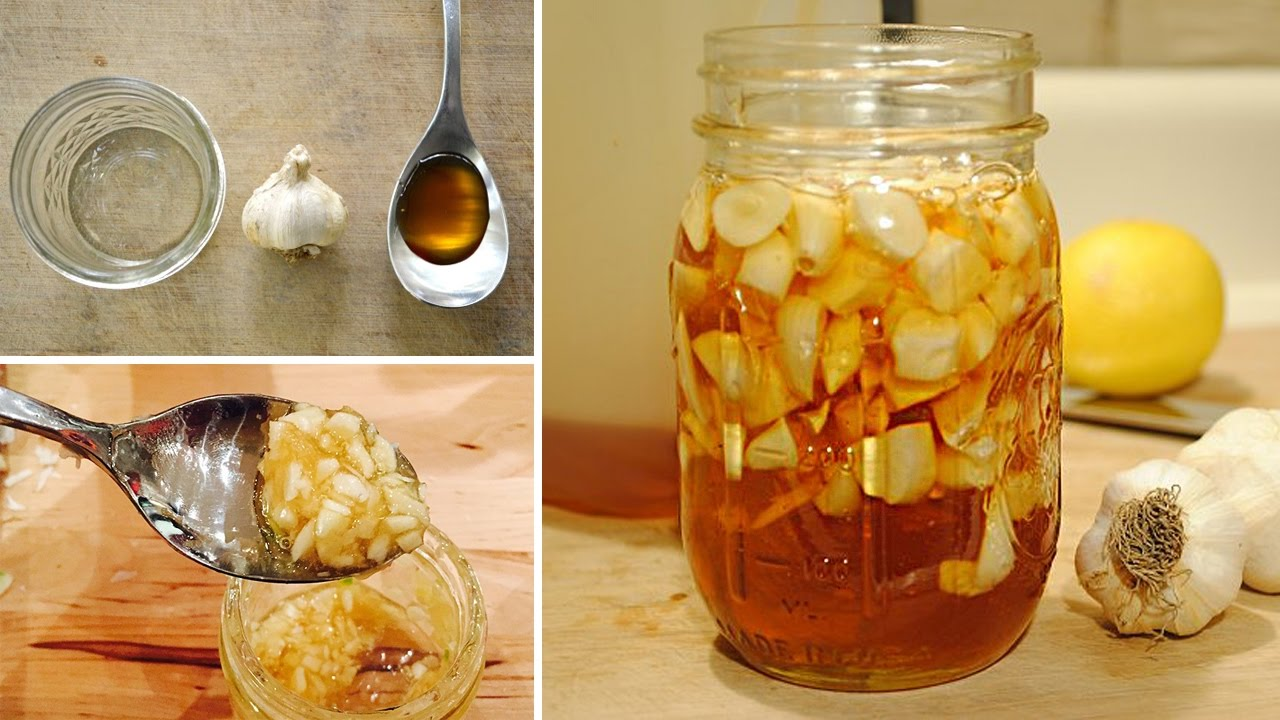 boost your immune system with garlic infused honey recipe youtube