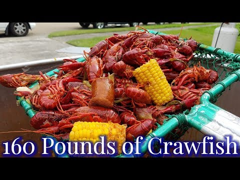 MASSIVE CRAWFISH BOIL WITH GATOR POTS  (2019)