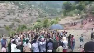 Cidha Oromoota Walloo