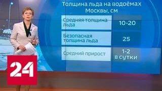 """""""Погода 24"""": вместо крещенских морозов в столицу пришла метель - Россия 24"""