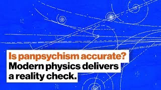 Is panpsychism accurate? Modern physics delivers a reality check. | Dr. Susan Schneider