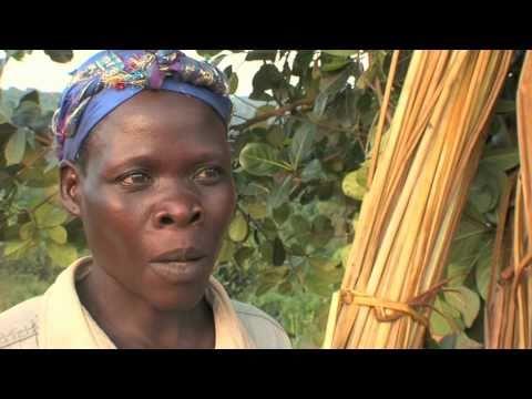Opportunity International: Und jeden Tag neu... - Mikrofinanzierung in Uganda