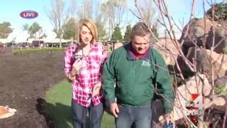 Good4Utah Gardens with Millcreek Gardens March 24, 2016