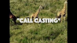 call casting migos ear rape