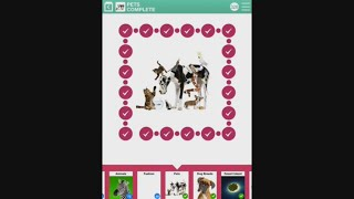 100 PICS Quiz - Pets 1-100 Answers
