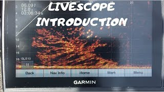 Introduction to Livescope