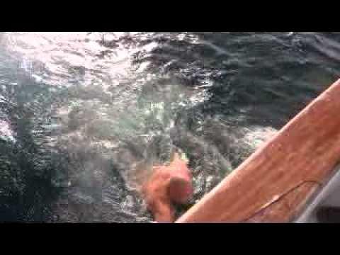 Vagabond Flydown 1-11 Chris saves the boat 1.mpg