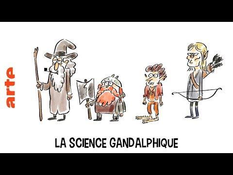 La science Gandalphique - Tu mourras moins bête - ARTE