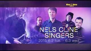 http://www.bluenote.co.jp/jp/artists/nels-cline/ ウィルコの一員とし...