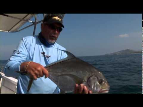 Inshore Fishing Expedition, With Sebastian Melani & Henry Waszczuk - Fishing Tv HD