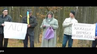 Протест проти вирубки лісів у Смизі