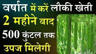 वरसात में करें लौकी की खेती होगी लाखों की कमाई | Lauki ki Kheti | Kheti | Smart Business Plus