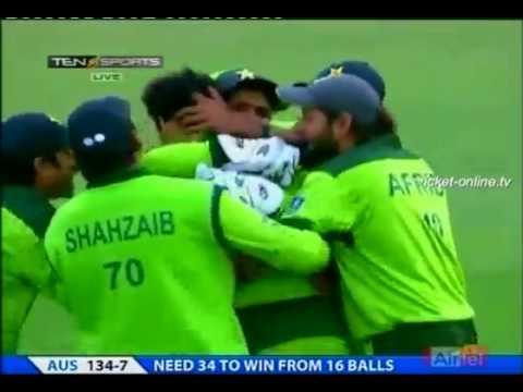 Umar gul bowled mike hussy
