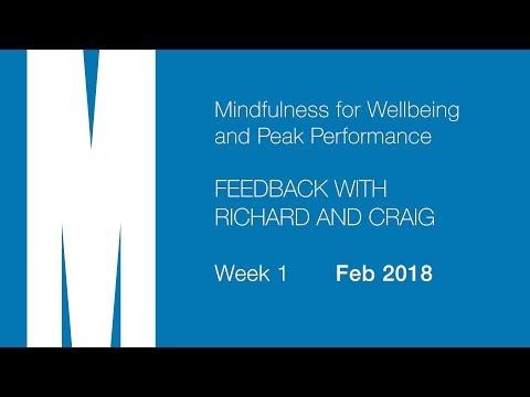 Feedback from Craig and Richard - Week 1 - Feb 2018