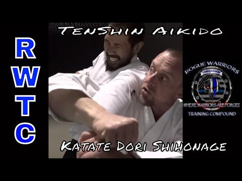 One of Aikido's Deadliest arm locks - SHIHONAGE #takingaikidoback