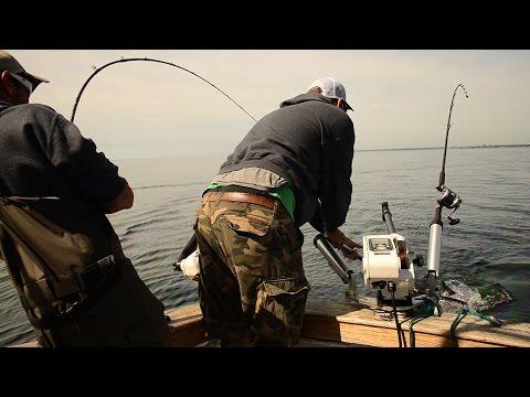 Salmon Fishing Lake Ontario: Popping Rods