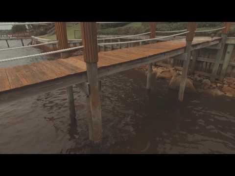 Dock Repair, New Dock Construction, Bulk Heads & More