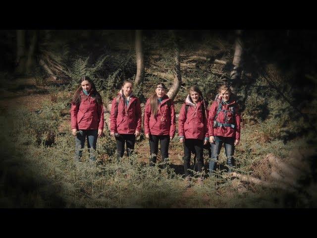 【宇哥】寒毛倒竖的灵异事件:女生郊外野营遭遇集体中邪《猎奇怪谈:英勇勋章》