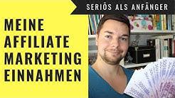 Affiliate Marketing MEINE Digistore & Amazon Einnahmen aufgedeckt | online Geld verdienen