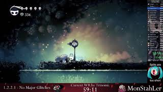 Hollow Knight All Skills NMG Speedrun - 58:29 loadless [WR]